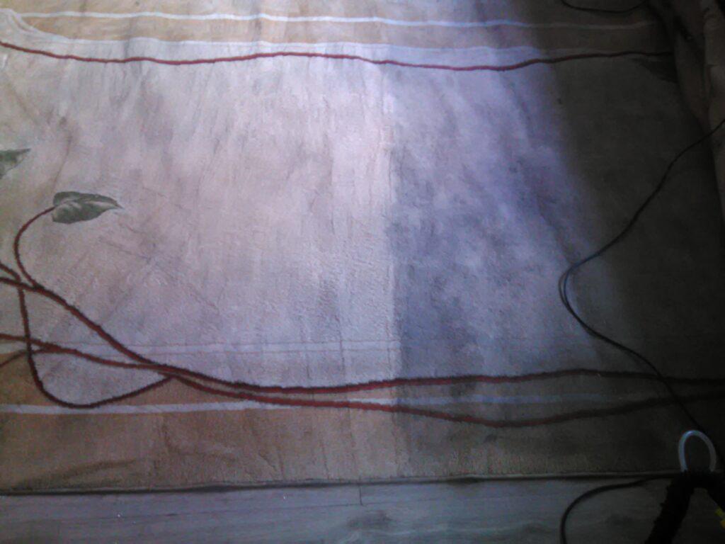 Dywan w trakcie prania - zobacz efekty